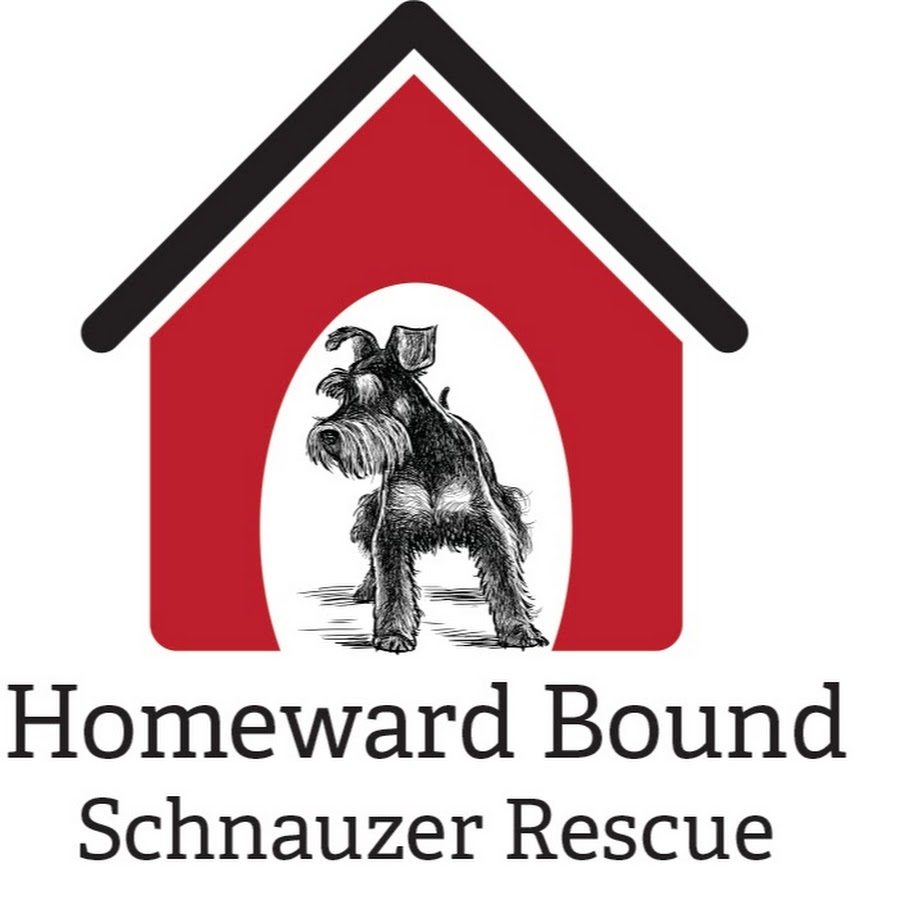 Homeward Bound Schnauzer Rescue